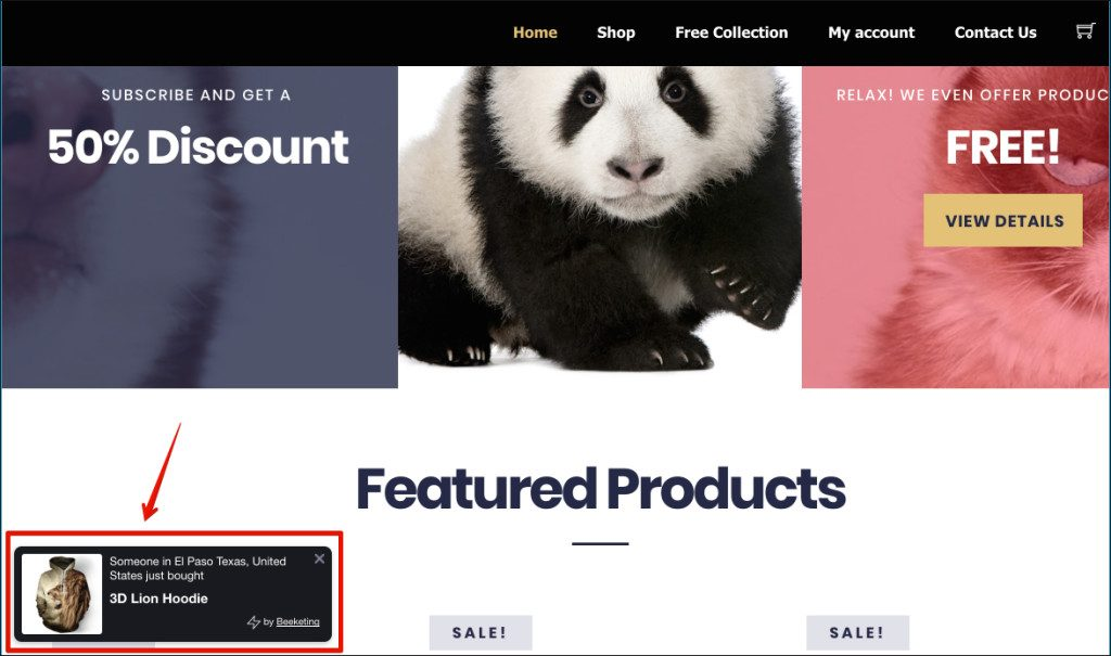 top-best-plugins-for-woocommerce-dropshipping-site13